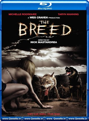 The Breed 2006 Dual Audio [Hindi Eng] BRRip 480p 300mb